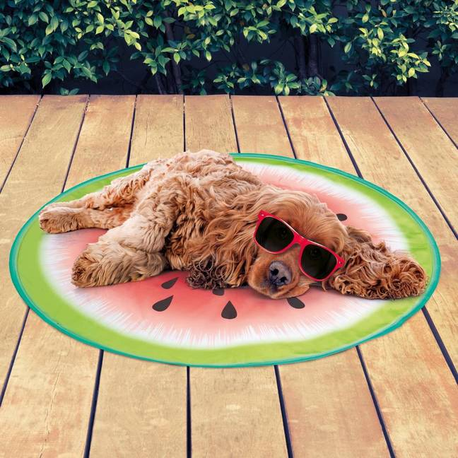 You can also get fruit-shaped mats for slightly cheaper (Credit: B&M)
