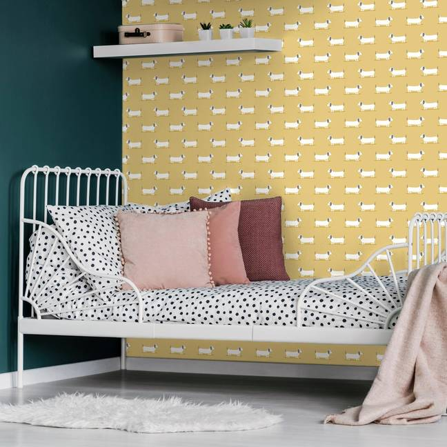 The collection even includes sausage dog wallpaper (Credit: Dunelm)