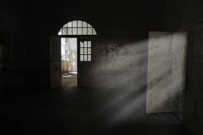 Surprises will lurk in every shadowy corner. (Credit: Unsplash)