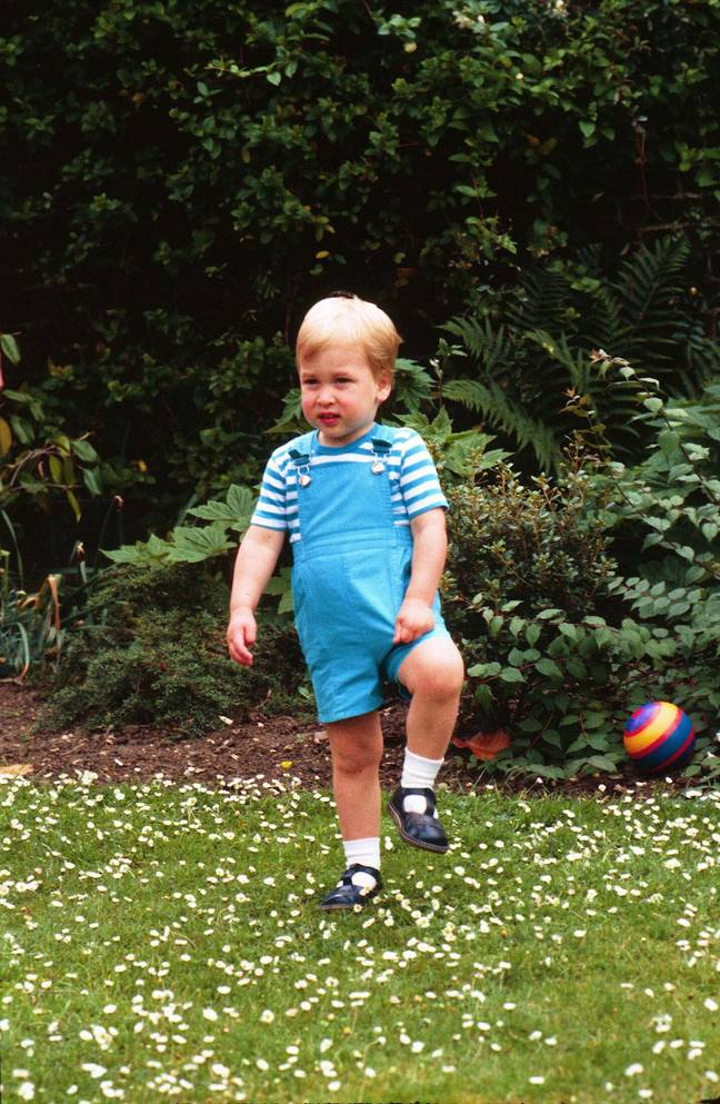 The Crown is recruiting for a little boy to play Prince William (Credit: PA)