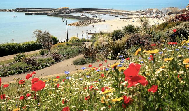 The scorching temperatures will likely see an increased number of people out and about in parks and on beaches (Credit: SWNS)