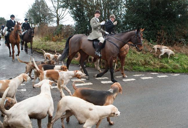 Hunters have apologised for the tragedy (Credit: PA)
