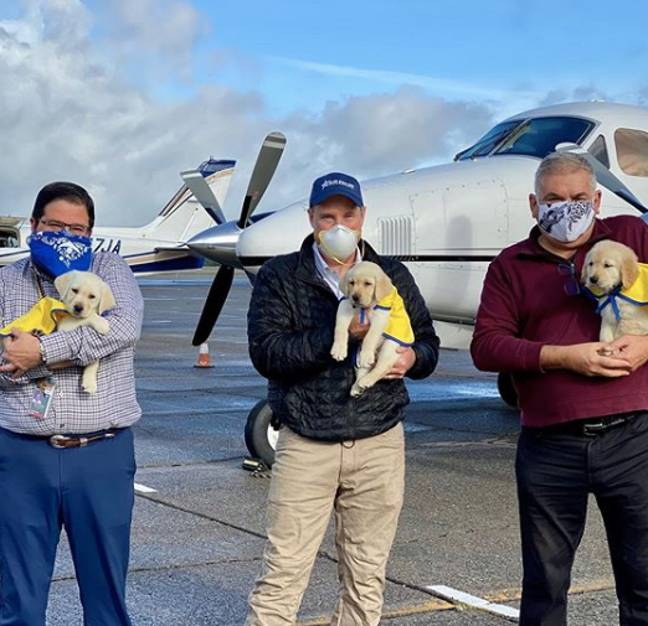 The three pilots volunteered to help the charity (Credit: Canine Companions For Independence/ Instagram)