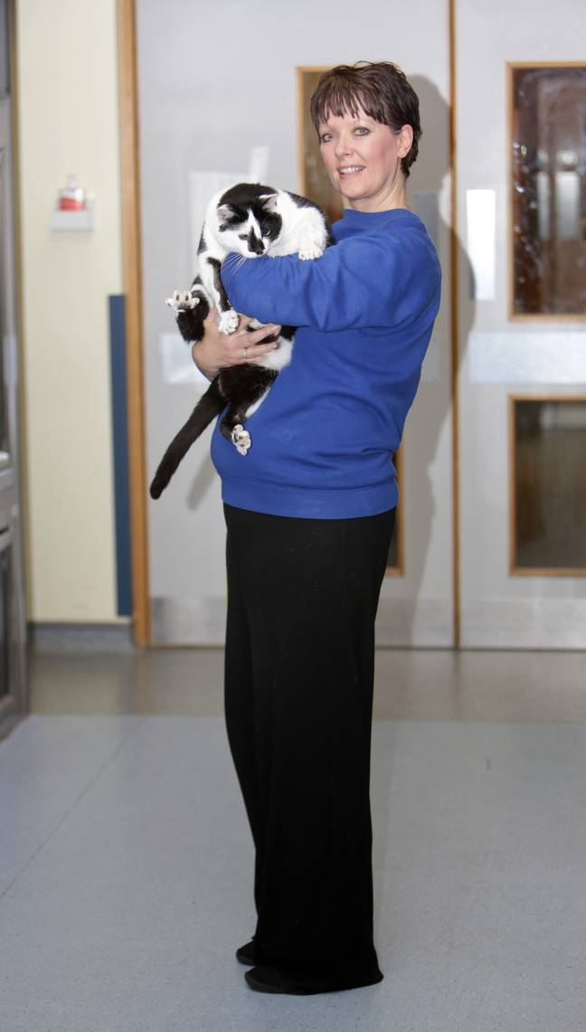 She was bought into the Cats Protection's National Cat Adoption Centre. (Credit: Caters)