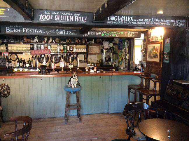 The pub is now adult (and dog) only (Credit: Kennedy News & Media)