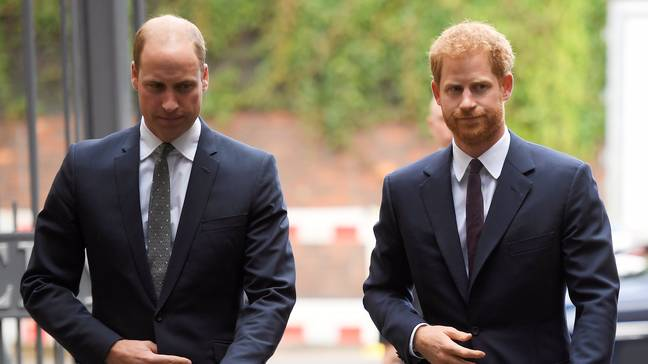 Prince Harry and Prince William are on 'different paths', he says (Credit: PA)