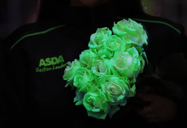 Simply turn off the lights and watch the illuminous blooms come to life (Credit: Asda)