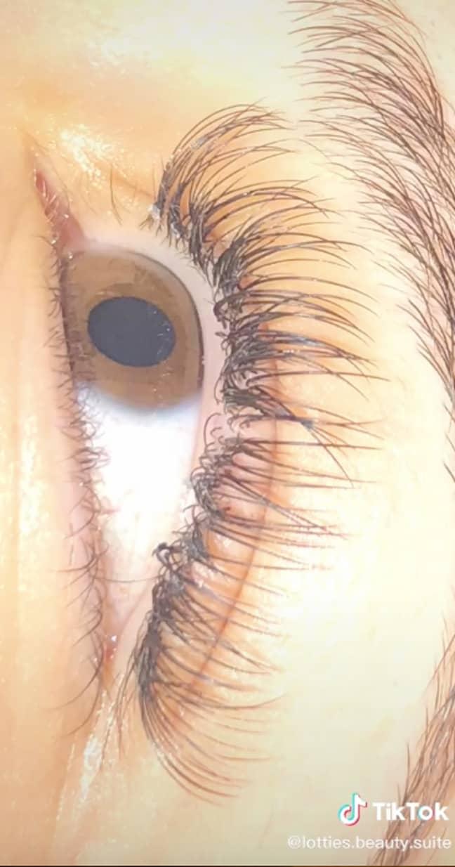 The client's eyelashes were salvaged (Credit: TikTok - lottiesbeautysuite)