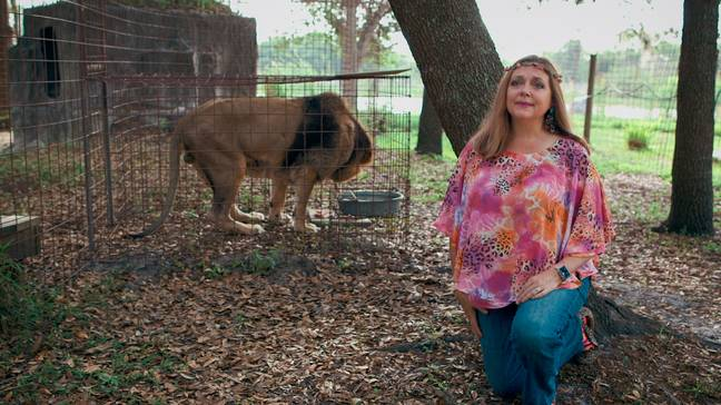Since 'Tiger King' was released, Carole Baskin has criticised the docu-series for being full of