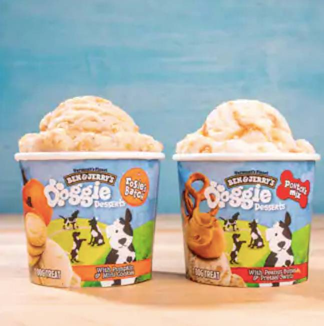 Ben & Jerry's has launched doggie ice cream (Credit: Ben & Jerry's)