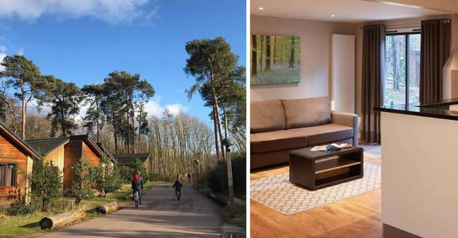 Center Parcs offer plush woodland lodges (Credit: Center Parcs UK Instagram/ Center Parcs Website)