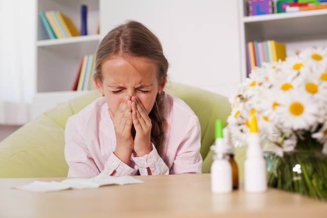 This is for anyone who's been suffering through the recent pollen bombs (Credit: Shutterstock)