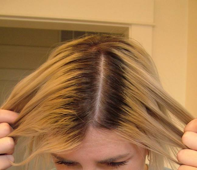 People could be charged more for longer roots (Credit: Flickr)