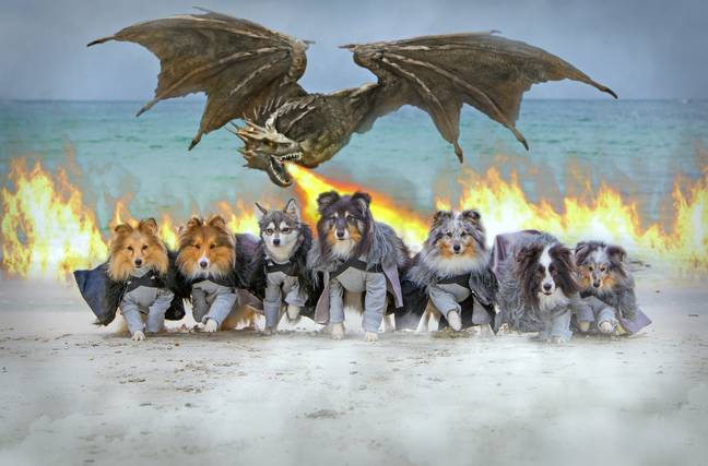 Kaylee photoshopped a dragon into this Game of Thrones image (Credit: Kaylee Garrick)