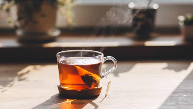 Green tea has the most proven health benefits (Credit: Pexels)