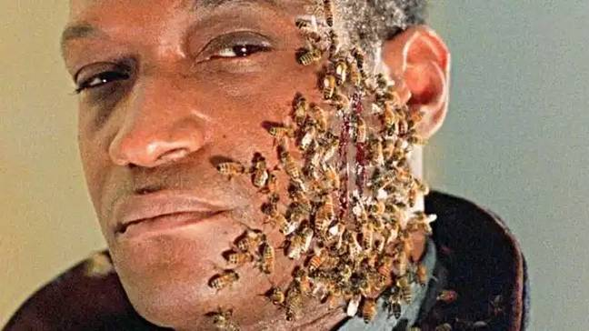 Tony Todd is rumoured to be returning as the Candyman (Credit: Tristar Pictures)