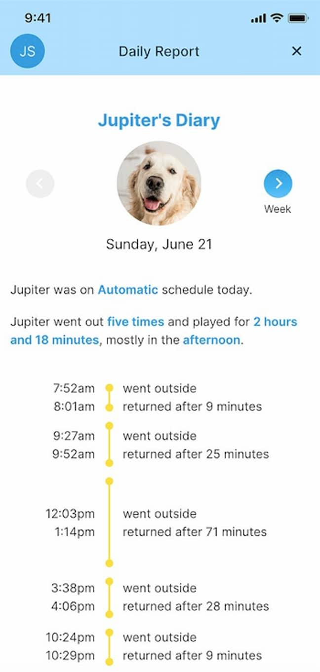 The app breaks down your pet's activity (Credit: MyQ Pet Portal)