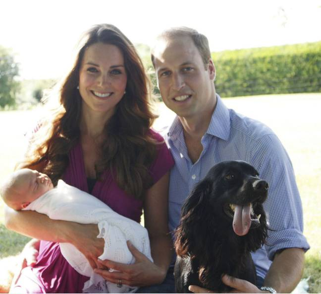 Lupo has been a key member of the Cambridge family for nine years (Credit: PA)