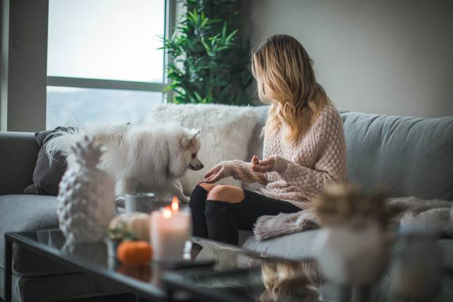 72 per cent of dog owners have cancelled plans to spend time with their pet (Credit: Unsplash)