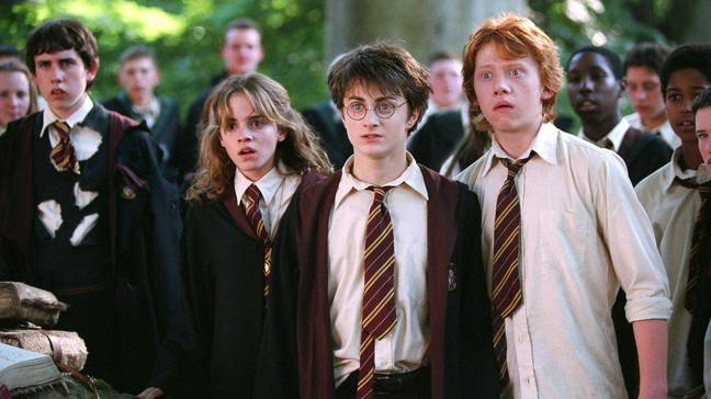 Harry, Ron and Hermione have no further adventures planned (Credit: Warner Bros.)