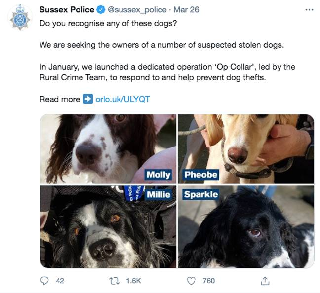An appeal was also made on Twitter (Credit: Twitter/ Sussex Police)