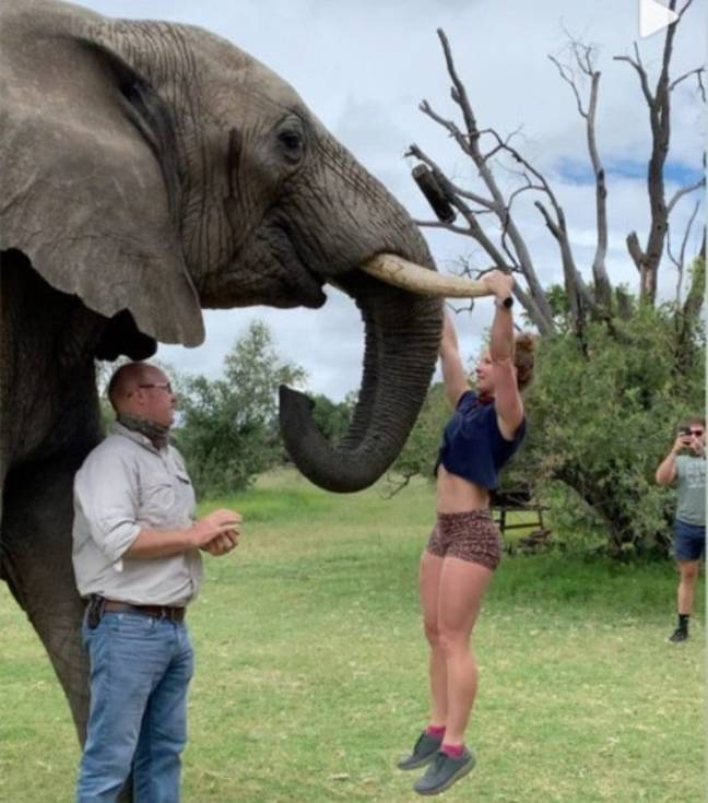 Emma could be seen hanging off the elephant's tusks (Credit: Instagram)