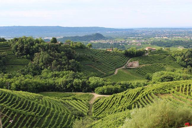 The Prosecco region - confusingly in the north of Italy - is where you'll find the good prosecco (Credit: Needpix)