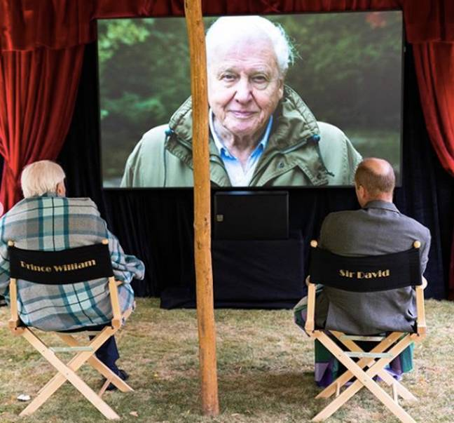 Sir David watches the film alongside Prince William (Credit: Kensington Royal)