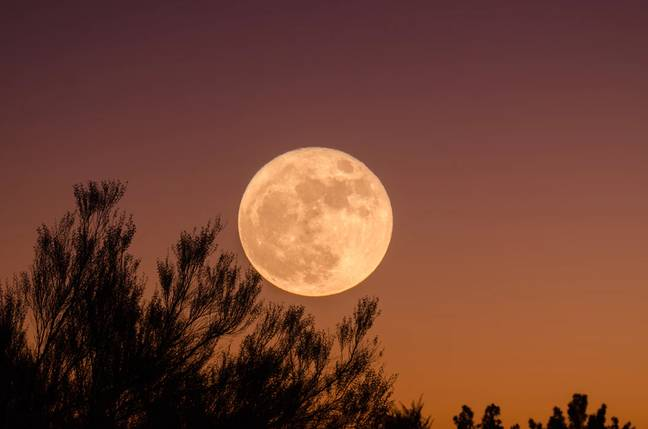 Keep an eye out for the moon on Wednesday (Credit: Unsplash)