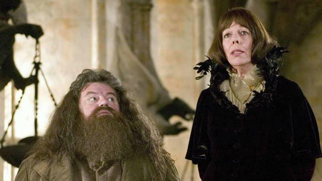 'Harry Potter' actress Frances de la Tour also stars (Credit: Warner Bros)