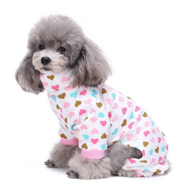 Dachshund Everywhere are selling pyjamas for small dogs and they look adorable (Credit: Dachshund Everywhere)