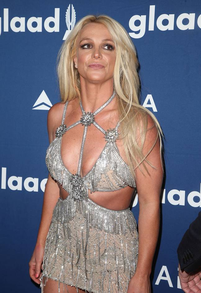 Britney's lawyer, Samuel D. Ingham III, argued last year that the singer was afraid of Jamie (Credit: PA)