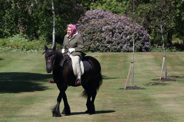 The Queen was pictured riding her 14-year-old pony, Fern, in Windsor Home Park (Credit: PA)