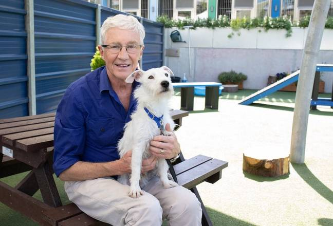 Splash met Paul O'Grady while filming ITV's 'For The Love Of Dogs'. (Credit: Battersea)