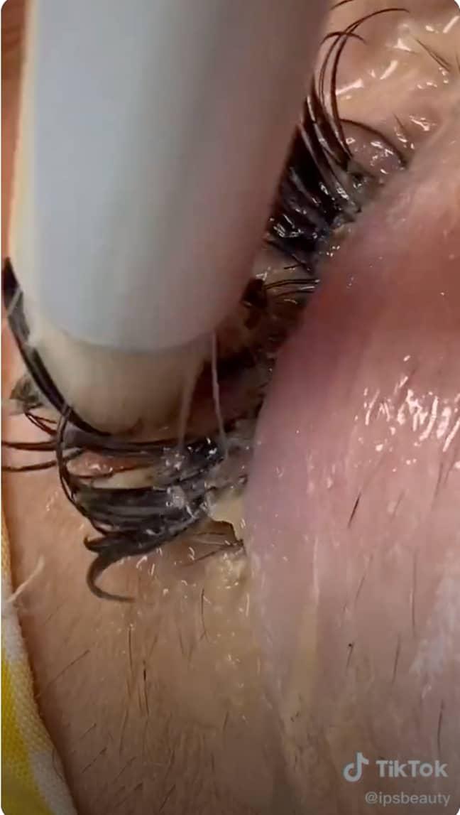 TikToker and beautician ipsbeauty attempts to clean her clients eyelashes (Credit: ipsbeauty/TikTok)
