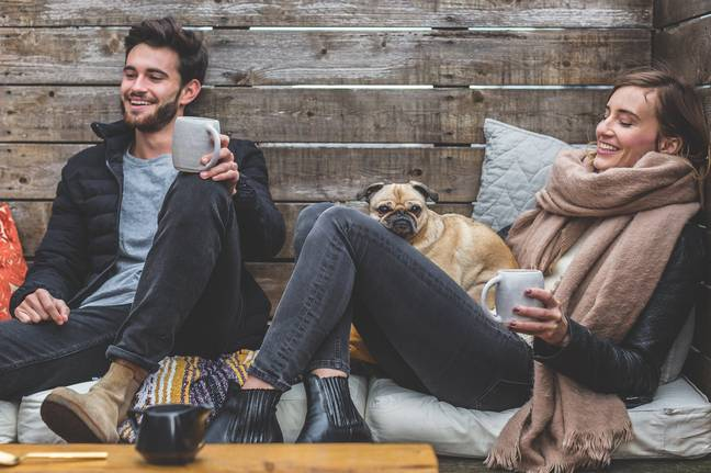 Dogs have a positive effect on our mental health too (Credit: Pixabay)