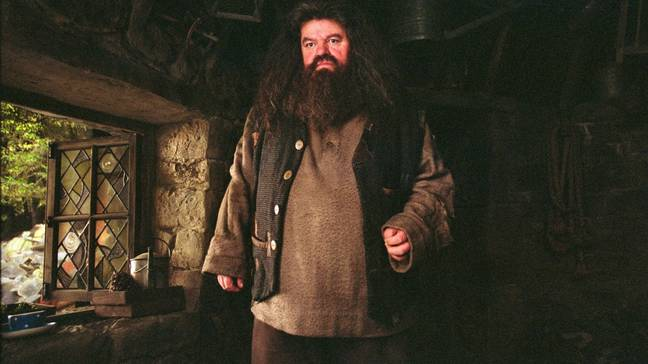 We think Hagrid would love this place (Credit: Warner Bros.)