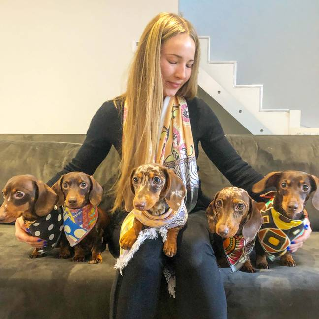 Harriet Birch owns the five daschunds (Credit: Caters)