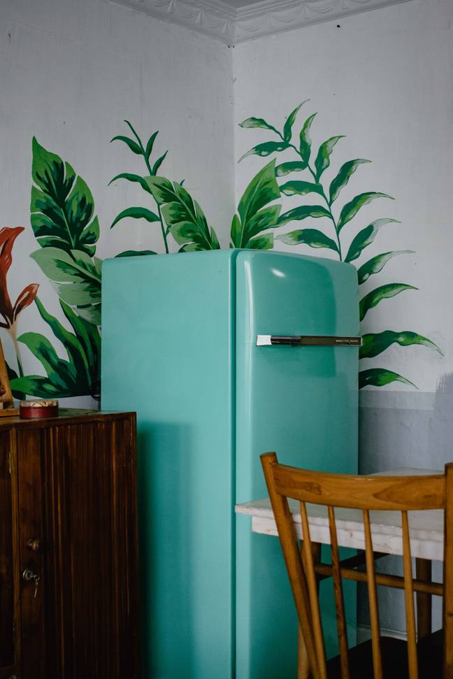 Your fridge may be in a desperate need of a pre-Christmas clearout (Credit: Unsplash)