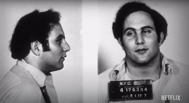 The 'Son of Sam' - aka David Berkowitz - was arrested in August 1977 ' Credit: Netflix