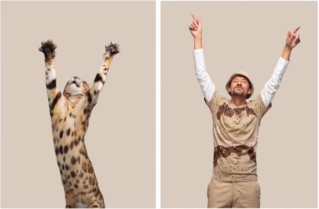 The Do You Look Like Your Cat? series is a hit online (Credit: Gerrard Gethings)