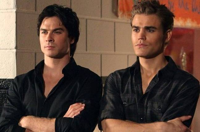 Ian Somerhalder and Paul Wesley starred as the Salvatore brothers in The Vampire Diaries (Credit: The CW)