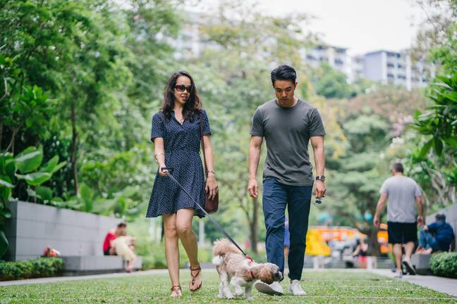 Dig will suggest dog-friendly places to go on dates (Credit: Pexels)