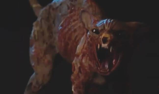 The next series also seems to feature a killer cat (Credit: Netflix)