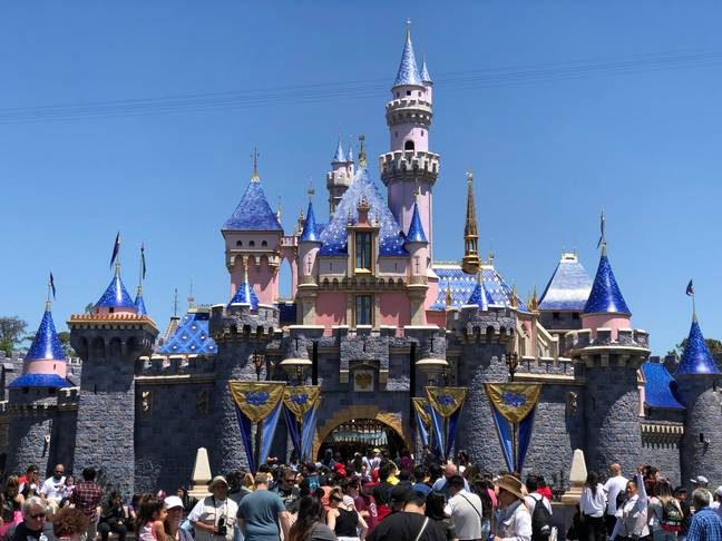 Disney's California Adventure park was closed for most of 2020 (Credit: PA)