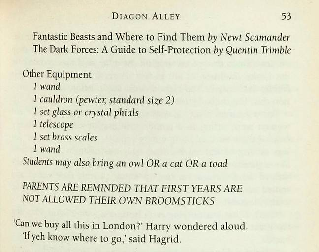 On one page, '1 wand' is written twice. Credit: SWNS