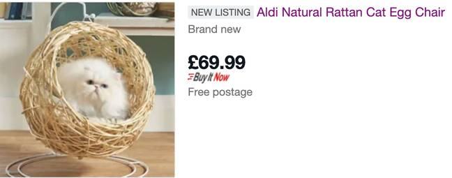 The Aldi cat-sized egg chair is being flogged on eBay for double the price (Credit: eBay)