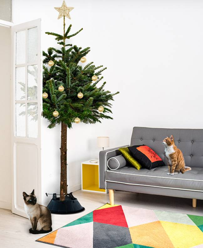 Never worry about your cat pulling down your decorations again (Credit: christmastrees.co.uk)