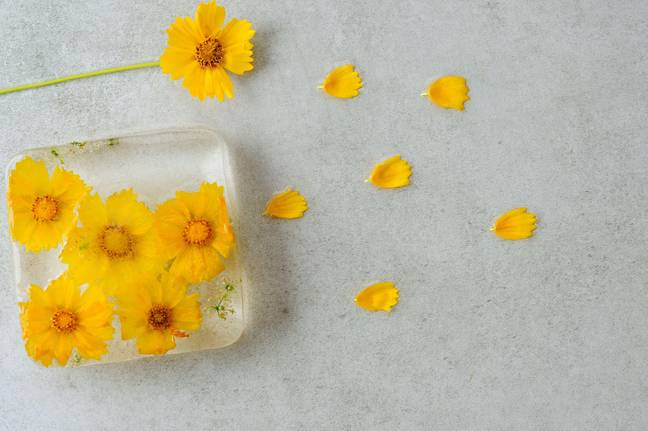 You can't just use any flowers for your ice cubes (Credit: Alamy/PA)