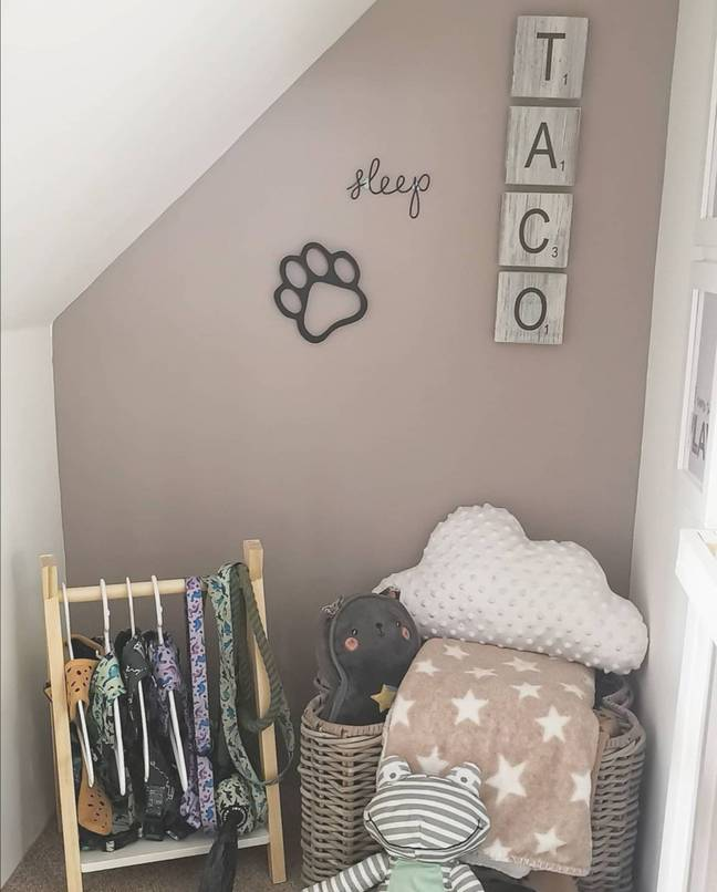 The under-stairs dog bedroom took a month to construct (Credit: Caters)